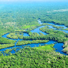 Amazon river
