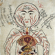 Avicenna's drawing from Canon of Medicine 