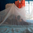 Child under bednet