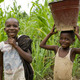 Children near Kunsu, Ghana