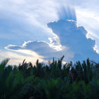 Clouds over the Tanjung Puting National Park, Indonesia