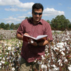 A cotton researcher