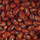 Cowpea