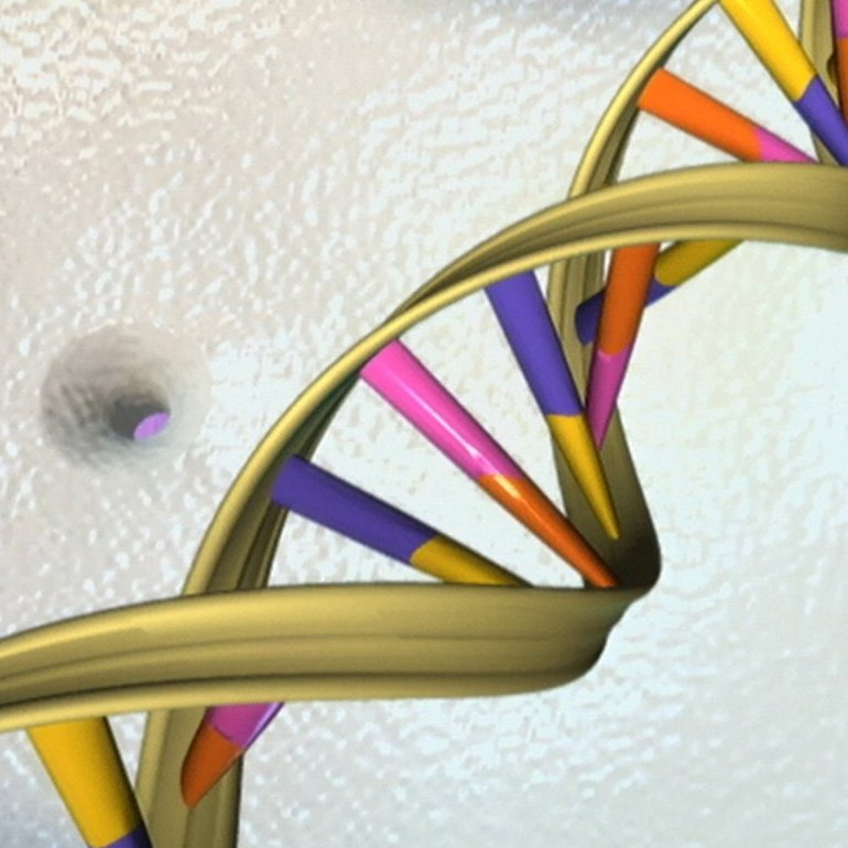 DNA_NHGRI