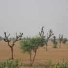 Drylands, India