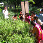Journalists are taught about the smells of various herbs