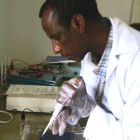 Ethiopian PhD student