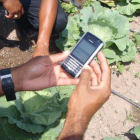 Farmers with a mobile phone