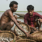Fishermen in Bangladesh