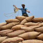 A farmer in India gathers together sacks of rice, India