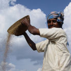Farmer in India