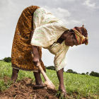 Farmer in Mali