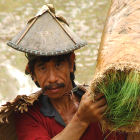 A farmer in the Philippines