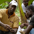 Cocoa farmers with an agricultural researcher, Côte d'Ivoire