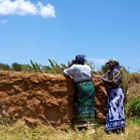 Farmers examining water tank 