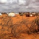 Famine forecasting systems still failing to spur action