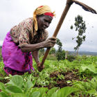 Woman farmer