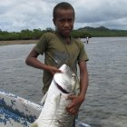 Local Kubulau youth with a giant trevally
