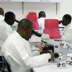 Malaria researchers