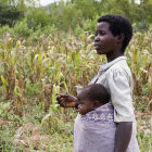 Maize farmer, Malawi
