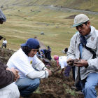 A Peruvian government agronomist studying potato