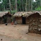 Pygmy houses in northern Republic of Congo