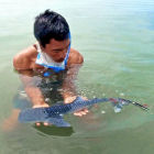 A man holding young whale shark