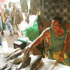 Woman selling fish in market, Zambia