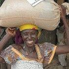 The Millennium Villages Project is giving fertiliser, seeds and advice to selected villages in Africa