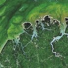 Satellite image of forest in Brazil