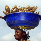 A woman carrying cassava