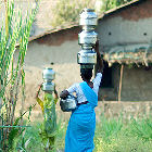 Women carrying water pots in India