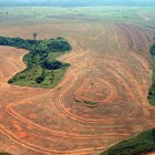 deforestationPara_Greenpeace_AlbertoCeisar