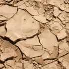 Soil cracked from drought