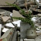 India must update building standards for better earthquake protection