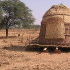 A granary stands in the middle of millet fields in Niger