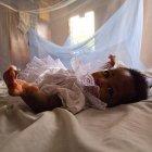 Infant under bednet