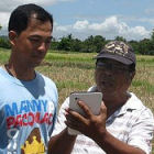 Agriculture experts use an app for mobile devices