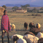 Young herder, Kenya