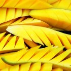 Scientists have sequenced part of the mango genome