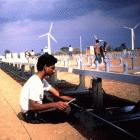 Wind farms in India can help mitigate climate change