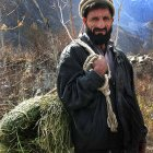 Pakistani farmer holding a bale over his shoulder