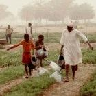 Farming is far from easy in the arid Sahel