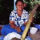 Samoan healer grinding Mamala bark