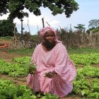 Senegal farmer