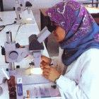 Libya and the US plan to boost cooperation in science and technology