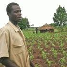 Maize farmer in Uganda