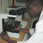 Malaria researcher in lab
