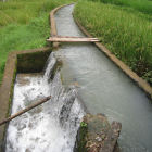 Mini canal surrounded by paddy fields to channel water from the river to the micro hydro power generator in Cibuluh, Indonesia